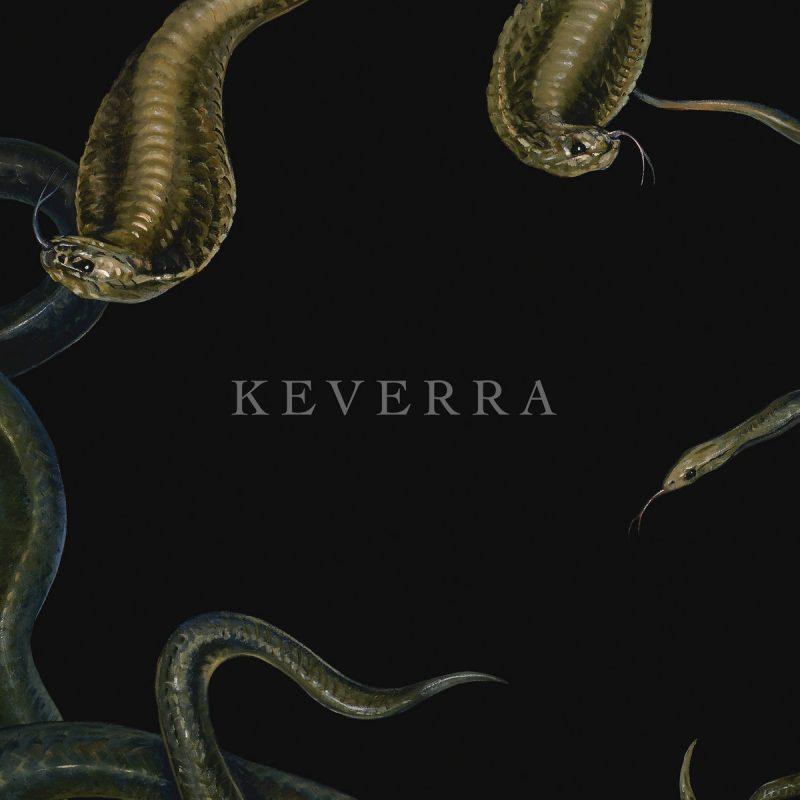Keverra Cover